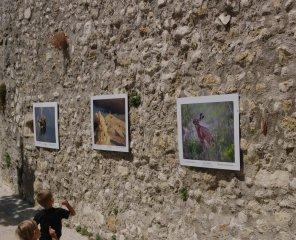 Photos place du Portail